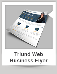 Triund Web Business Bi-Fold Brochure - 6