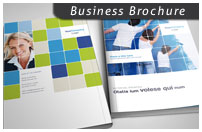 8 Page Business Brochure - 6