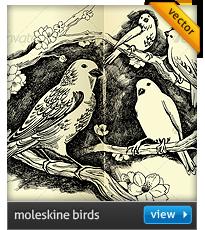 moleskine birds