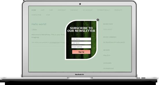 Mailchimp Custom Popup Subscription for wordpress - 10