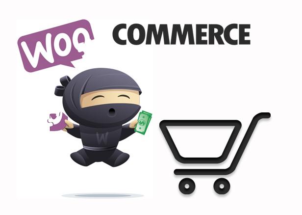 Paco - Responsive WooCommerce WordPress Theme - Woocommerce Integration