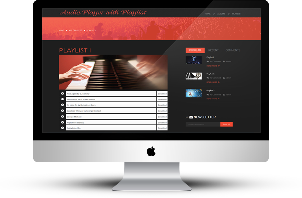 HTML5 Audio Player with Playlist for Wordpress - 11