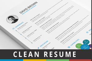 Simple Infographic Resume - 1