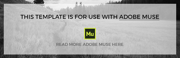 Vida - Multipurpose Muse Template - 5