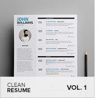 Clean Resume Vol. 5 - 12