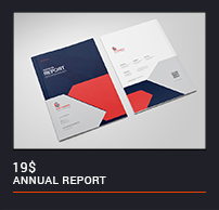 The Annual Report - 11