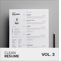 Clean Resume Vol. 5 - 14