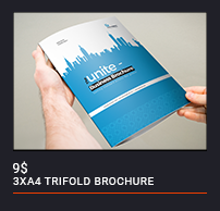 Trifold Brochure - 81