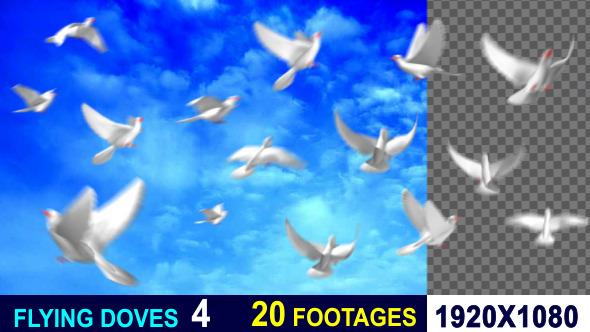 Flying doves (pack Vol.3) - 1