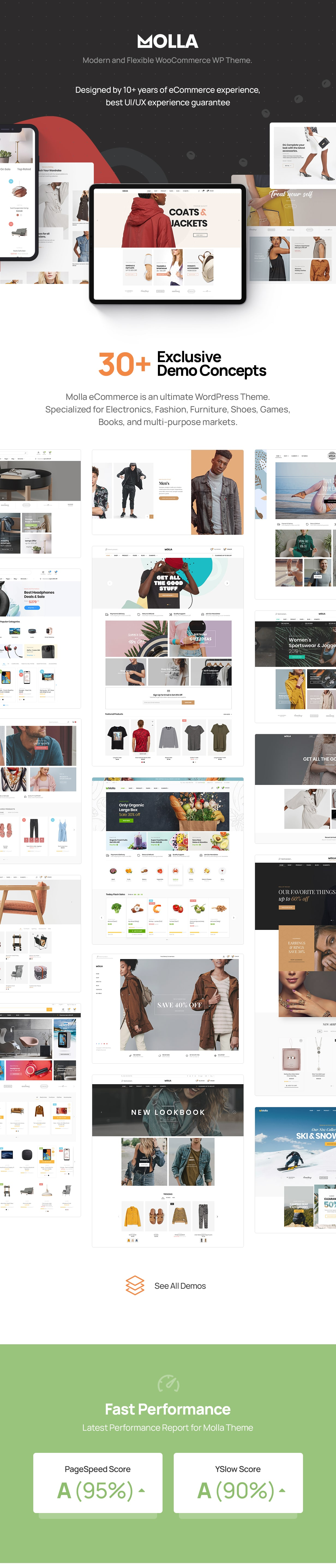 Molla | Multi-Purpose WooCommerce Theme - 3