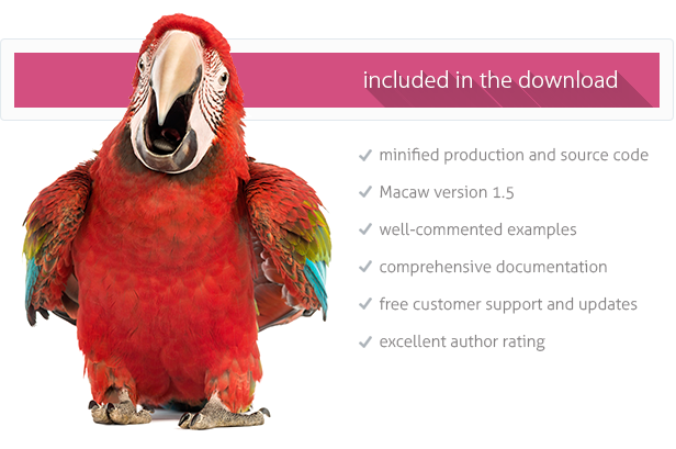 FAQ: Macaw - Interactive Questions & Answers - 2