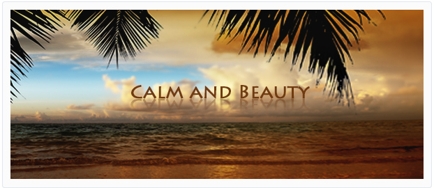 calm beauty chillout lounge relaxation piano background music
