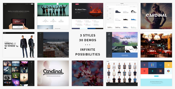 Cardinal WordPress Theme