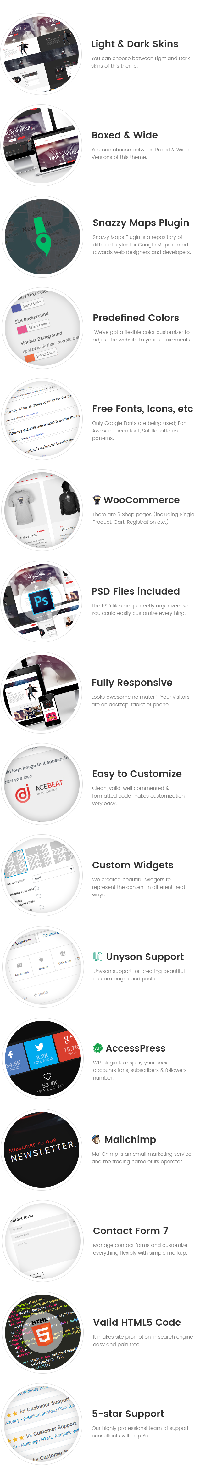 AceBeat - DJ Personal Page WordPress Theme>