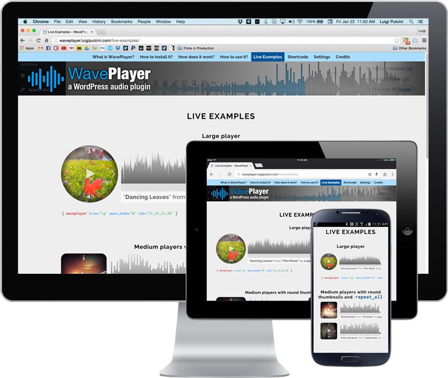 WavePlayer - WordPress Audio Player with Waveform and Playlist - 1