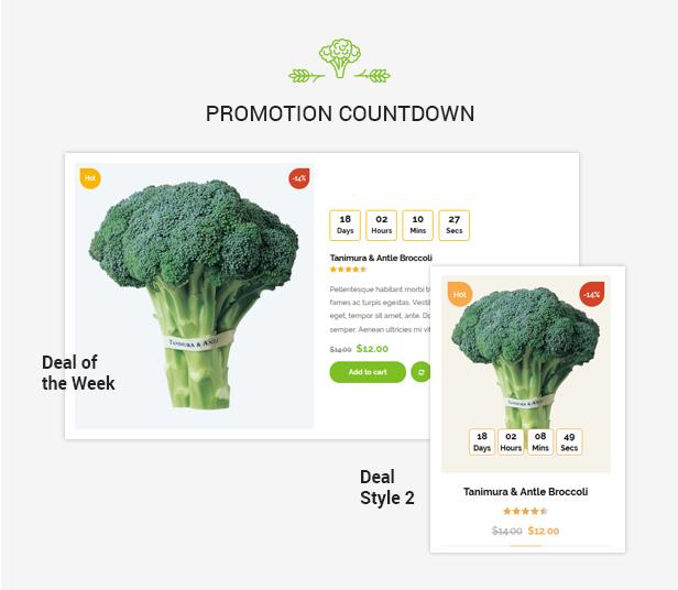 Organiz - An Organic Store WooCommerce Theme - 15