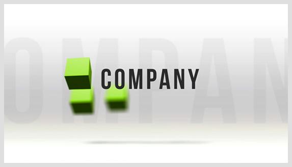 Company Portfolio - 1