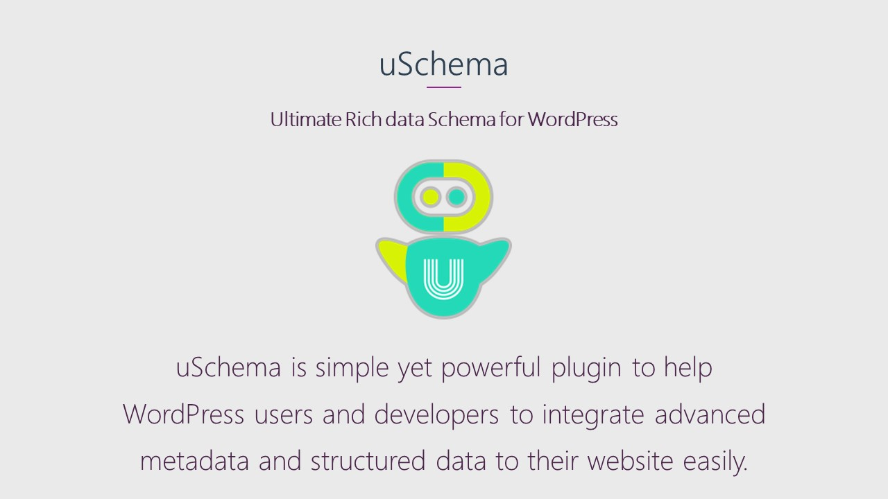 uSchema Description