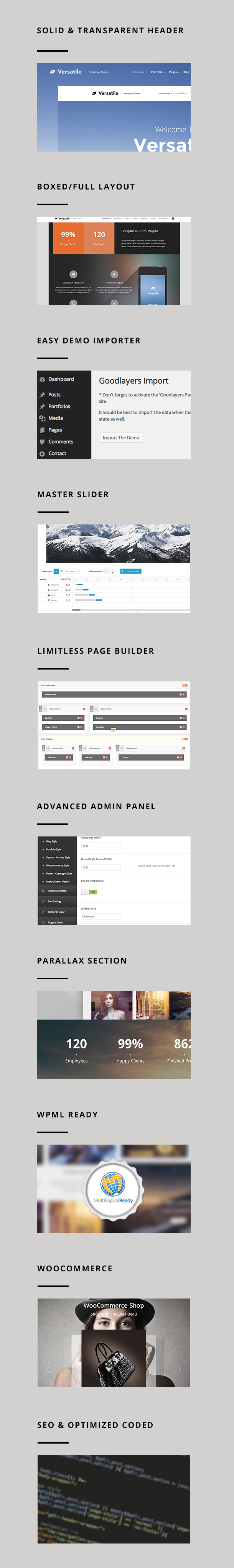 Versatile - Responsive Multi-Purpose WP Theme - 2