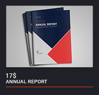 The Annual Report - 1