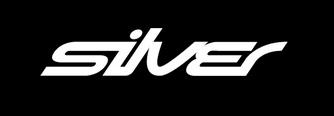 Silver Agency Ltd