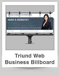 Triund Web Business Bi-Fold Brochure - 4