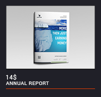 The Annual Report - 13