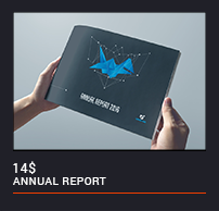 The Annual Report - 19