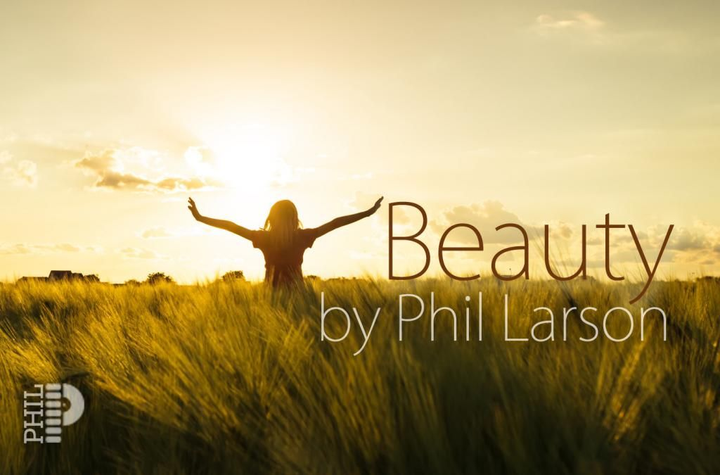Beauty by Phil Larson