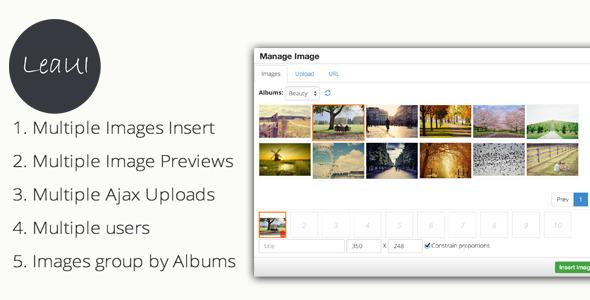 TinyMCE4 Album Image Manager