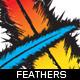 Feather-illustration-ioshva