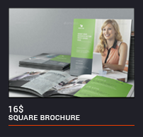 Trifold Brochure - 66