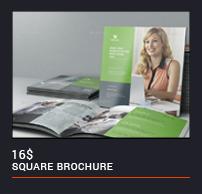 Landscape Company Profile - 66