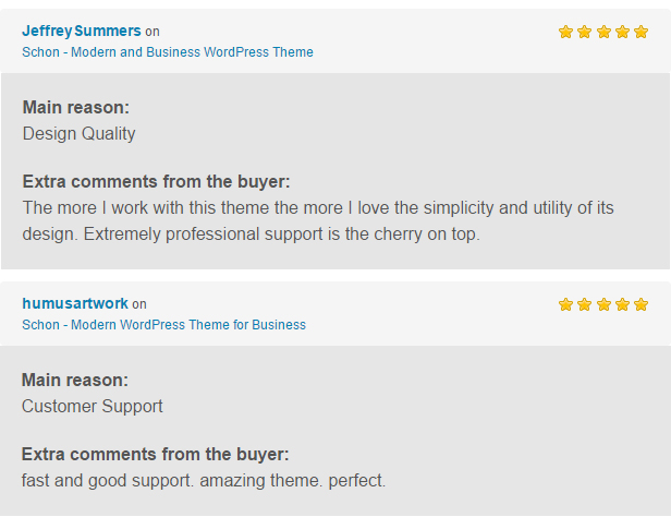 Schon WP Theme Reviews