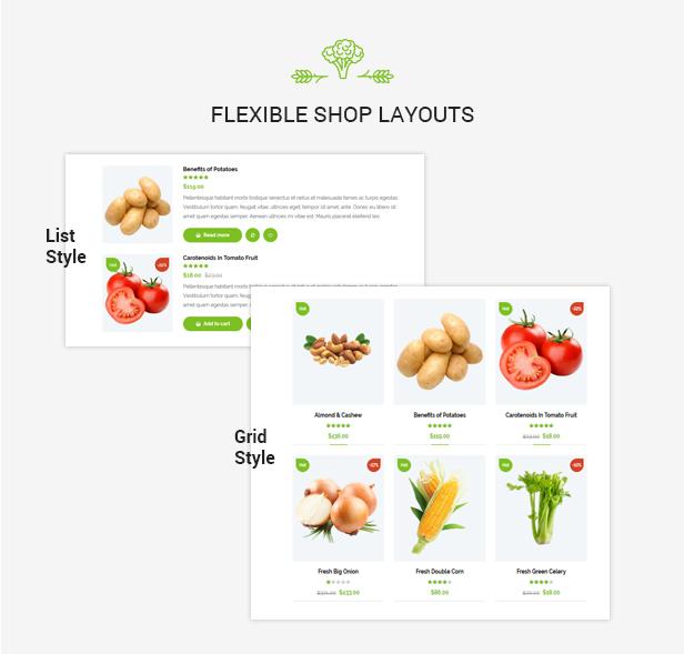 Organiz - An Organic Store WooCommerce Theme - 14