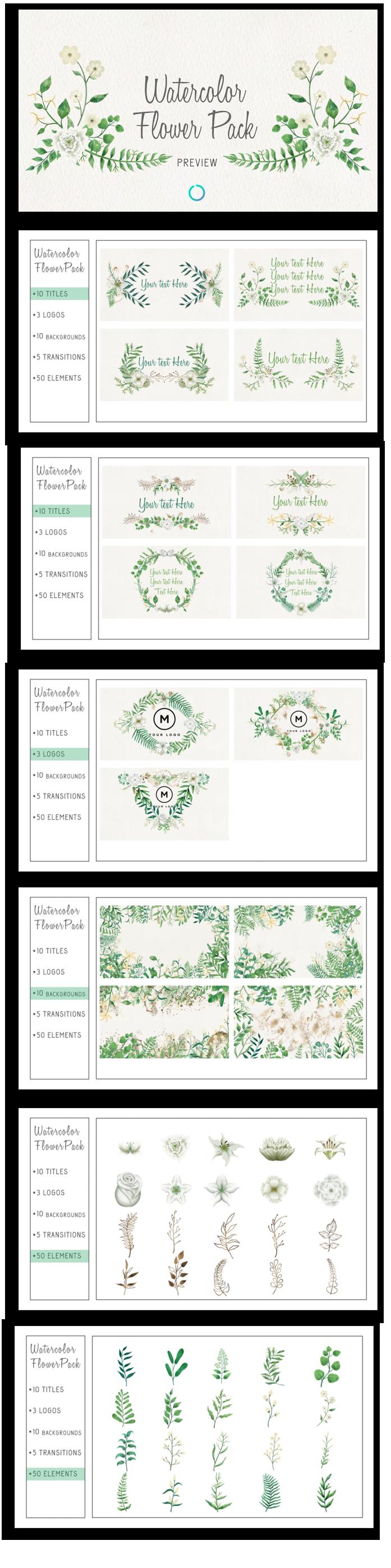 Watercolor Flower Pack - 1