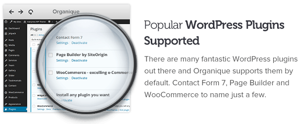 Popular WP plugins supported