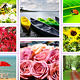 10 Color Effect Actions V2 For Photographers  - 61