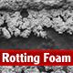Rotting Foam