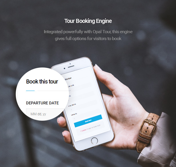 powerful tour booking engine of Delux online Hotel Booking WordPress Theme