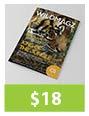 InDesign Magazine Templates - 3
