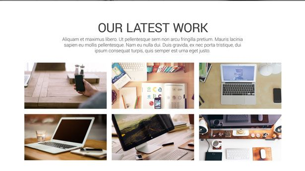 Web Service or Portfolio Presentation - 3