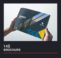 Trifold Brochure - 44