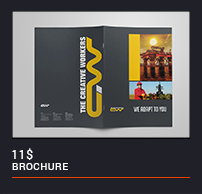 Trifold Brochure - 45