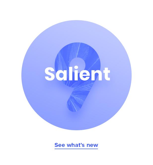 salient v9.0