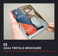 Trifold Brochure - 60