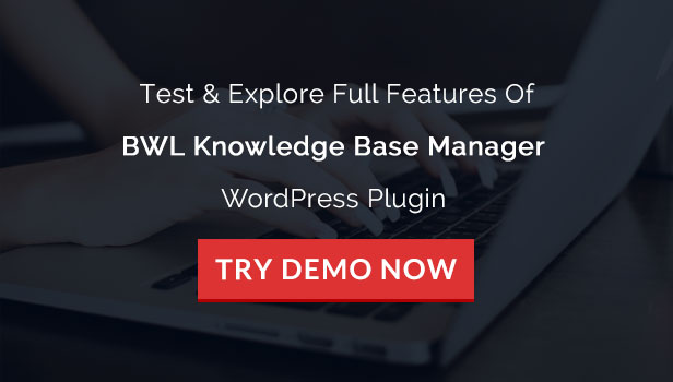 BWL Knowledge Base Manager - 13