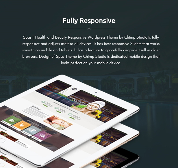 Spa Theme Wordpress