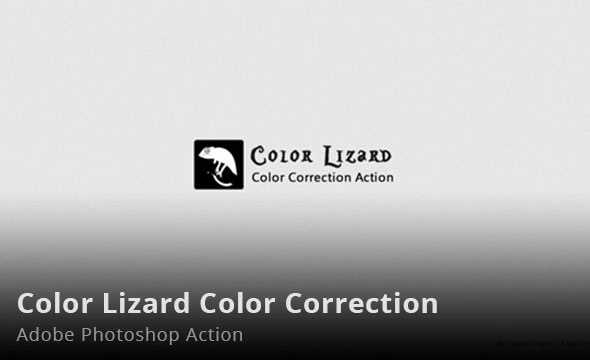 Color Lizard Color Correction Photoshop Action