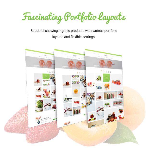 Organisk - Multipurpose Organic WooCommerce Theme - 6